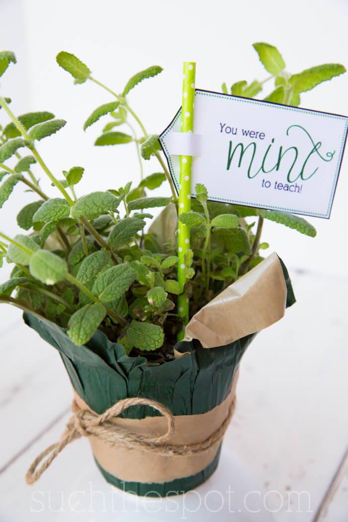 Teacher Gift - Printable Herb Label
