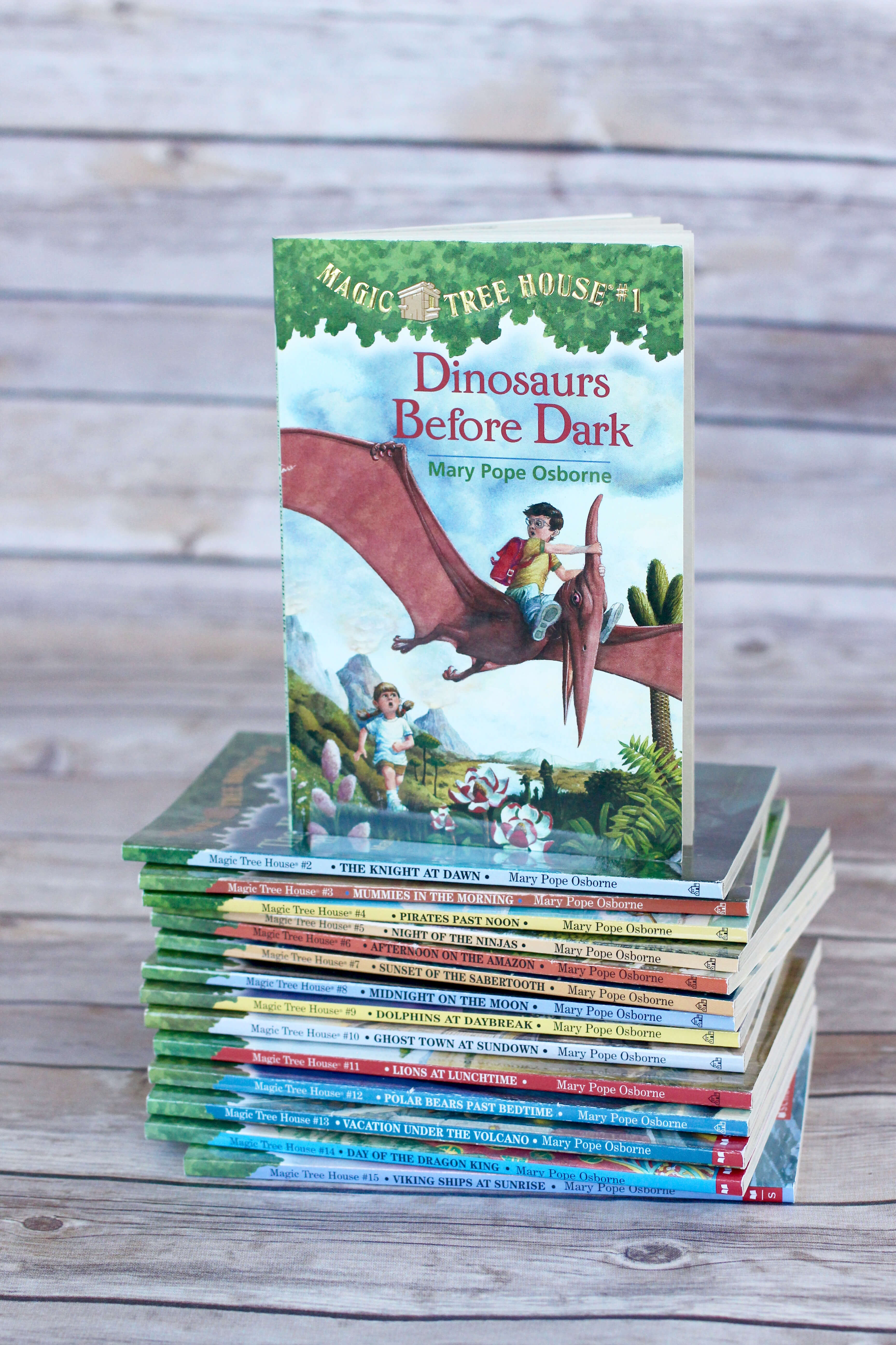 Magic Treehouse Series. First Chapter Book to Read Aloud to your preschooler or kindergartener