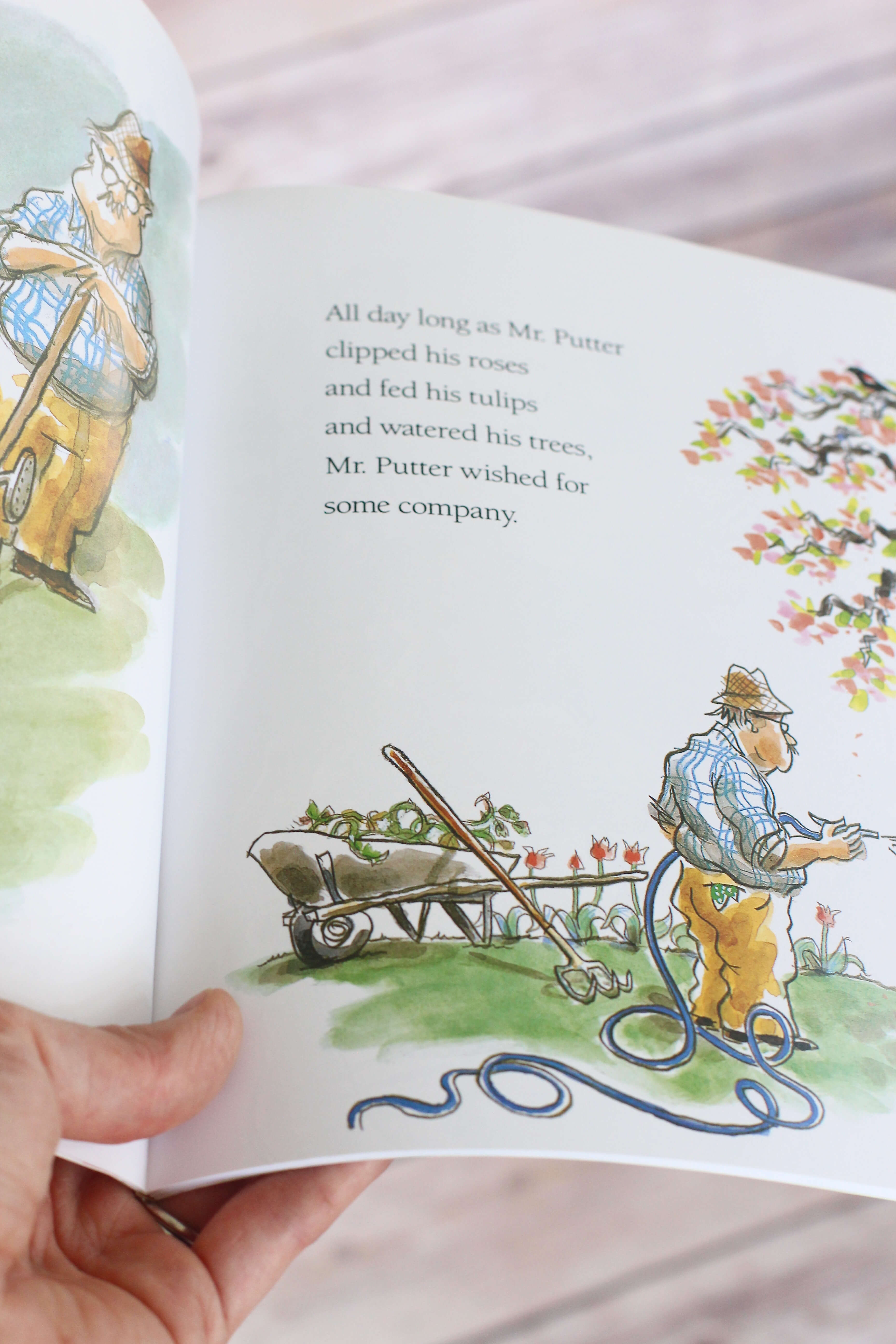Mr. Putter and Tabby illustrations inside book. First Chapter Book to Read Aloud to your preschooler or kindergartener