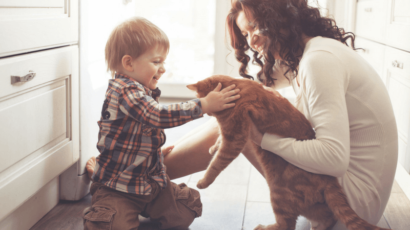 Best Non-Toy Gift Guide for Kids - a pet!