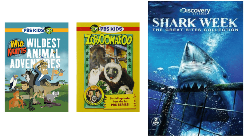 Best Non-Toy Gift Guide for Kids - educational DVDs