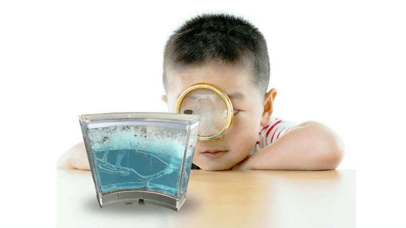 Best Non-Toy Gift Guide for Kids - ant farm