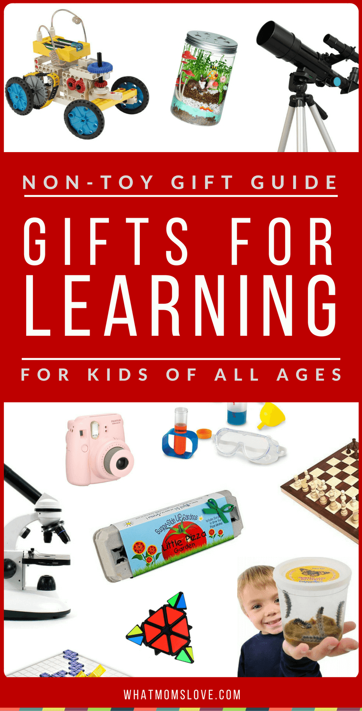 Non-Toy Gift Guide: Gifts for Learning & Expanding ...