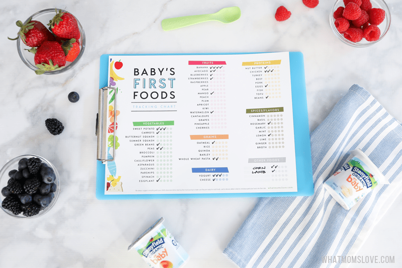 Printable Checklist For Baby S First Foods Tips For